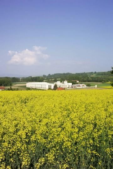 2006: LEHA (Umgebung)